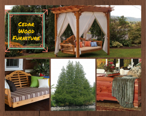 Cedar Wood Furniture