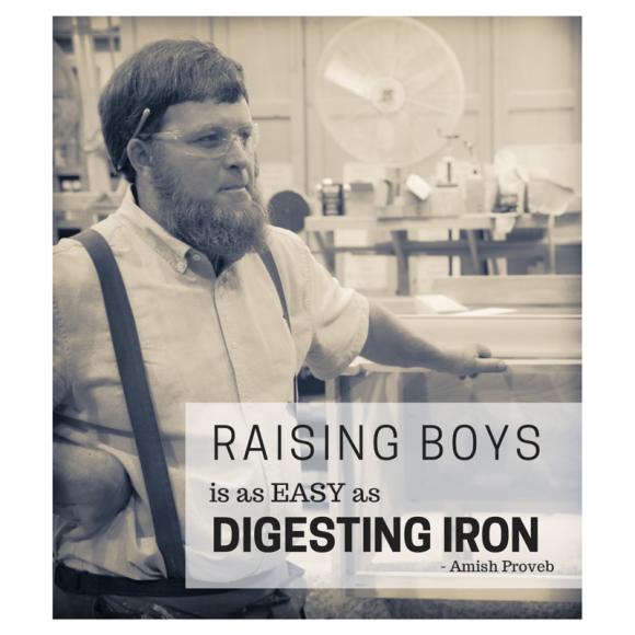 raising boys Amish Proverb