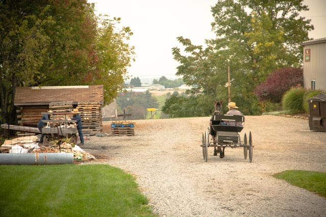 Photo From Meet the Amish Makers: Mt Eaton Collection - Dutchcrafters 2