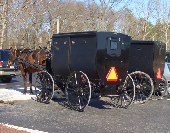 Where Do Amish People Live?