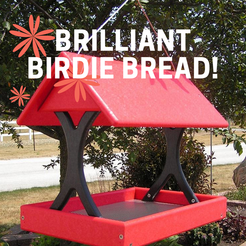 Brilliant Birdie Bread Recipe for our Poly Poly Fly Through Bird Feeder