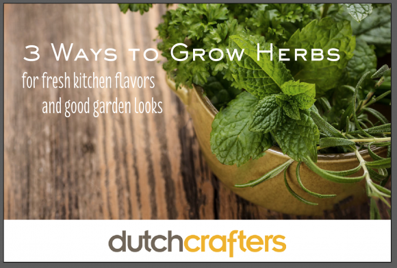 Three Ways to Grow Herbs by Dutchcrafters