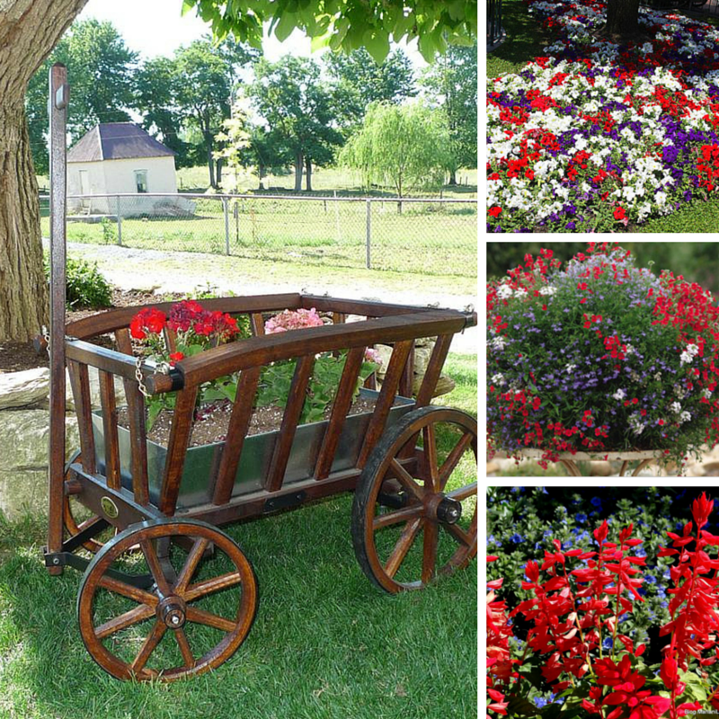 America the Beautiful: The Fourth of July Garden Planter by DutchCrafters