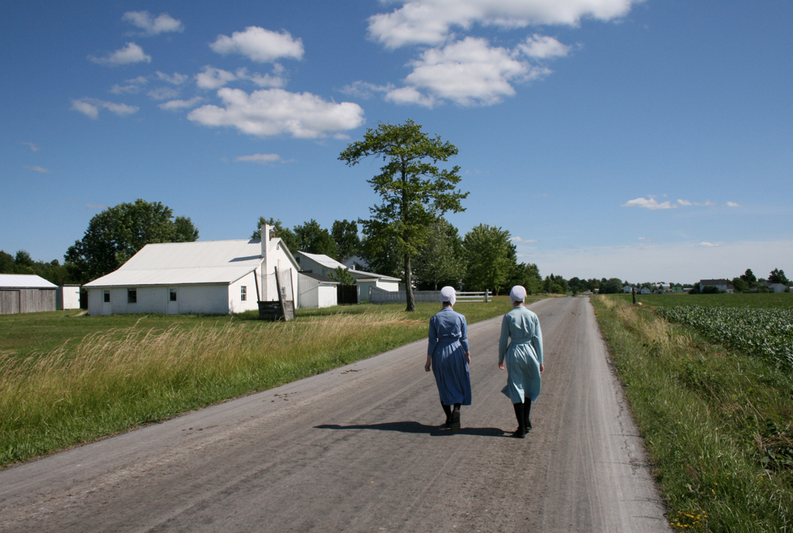 Everything You Want to Know About: Amish Transportation: Foot Power