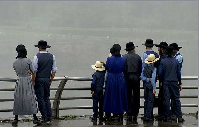 Everything You Want to Know About: Types of Amish: Implications of Diversity