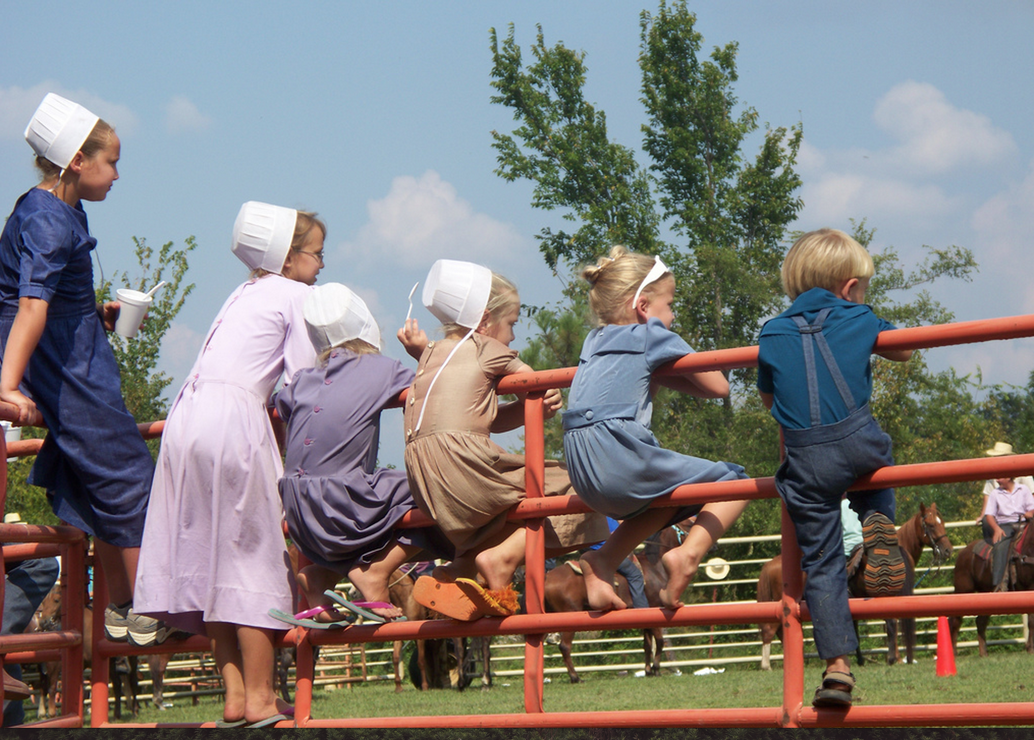 Everything You Want to Know About: Amish Children