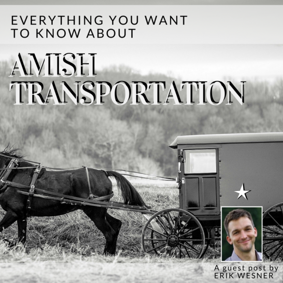 Everything You Want to Know About: Amish Transportation