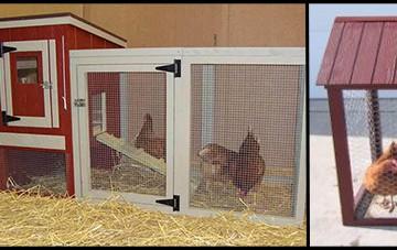 Urban Chicken Coops
