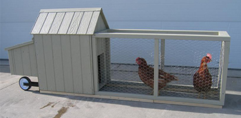 Amish Wood Corn Row Urban Chicken Coop