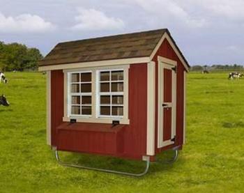 Urban Design Chicken Coop