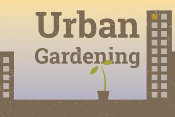 Urban-Gardening-Blog