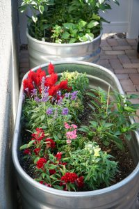 The galvanized steel watering troughs.