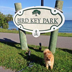 Bird Key Park in Sarasota, Florida is pet friendly.