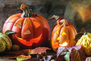 Recycling Halloween Pumpkins