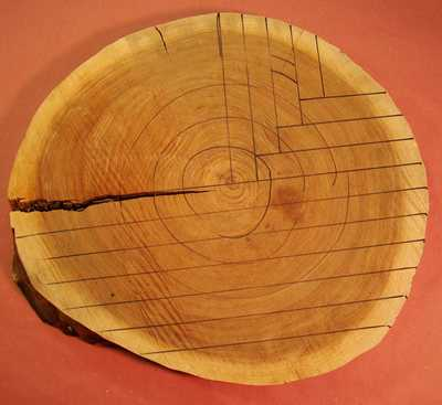 A log marked with both plain sawn and quarter sawn cuts.