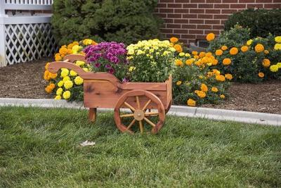 Amish Crafted Decorative Peddlers Cart