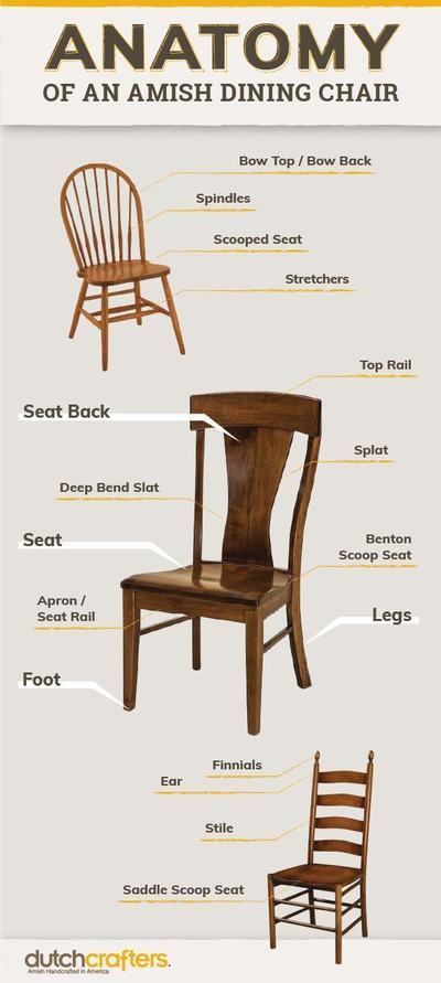 Anatomy Chair Infographic