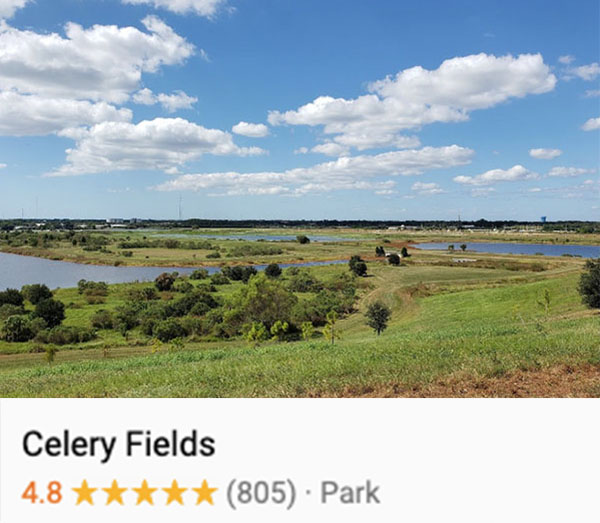 View of water, trees, and clear skies at a section of the Celery Fields