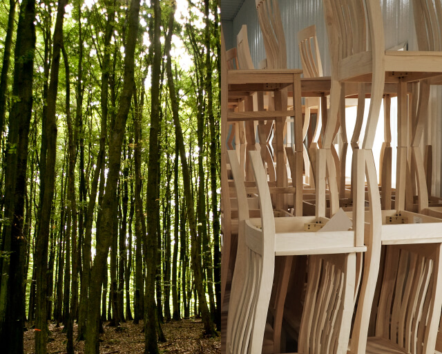 From forest to furniture: trees create beautiful DutchCrafters solid wood furniture