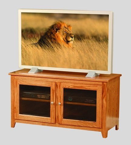 A TV stand and majestic king of the Savanna
