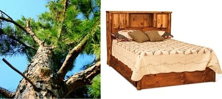 Rustic Pine Log Cabin Bed