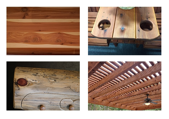 Examples of Cedar