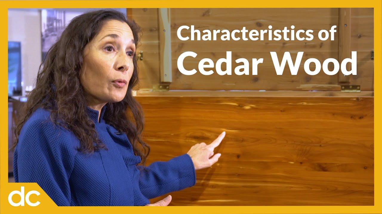 Video Title Image: Characteristics of Cedar Wood
